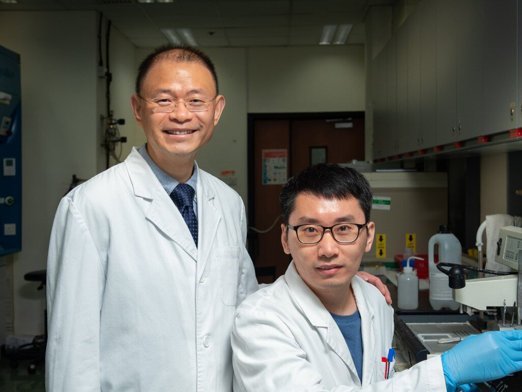 Professor Zhang Ge (left) and his team member Dr. Liang Chao